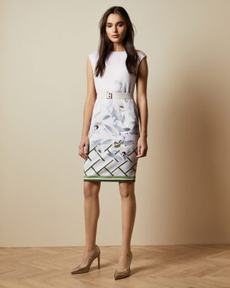 Ted Baker Haliey Dress Pinkki