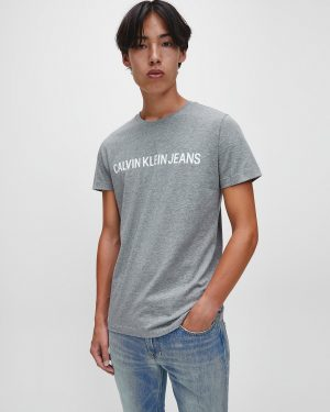 Calvin Klein Institutional logo T-shirt Grey Heather