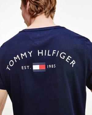 Tommy Hilfiger Back Logo T-shirt Desert Sky