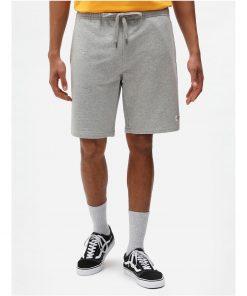 Dickies Champlin Shorts Grey